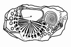 Knowth Kerbstone 15. Sketch by B.L. Freeborn.