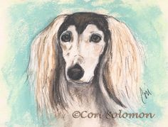 This is my latest pet portrait of a Grizzle #Saluki