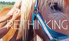 Horses receive more vaccinations on a more frequent schedule than any other domesticated animal. Based on a protocol of fear, not fact, this practice has . Horse Care, Dog Care, Dog Clinic, Animal Science, Eyes Problems, Dressage Horses, Dog Teeth, Teeth Cleaning, Equestrian