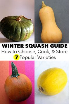 Winter Squash Guide: How to Choose, Cook, and Store 7 Popular Varieties There are so many types of squash! This winter squash guide walks you through what you need to know about choosing, storing, and cooking common varieties. Acorn Squash Recipes, Pumpkin Seed Recipes, Pumpkin Squash, How To Cook Squash, Cooking Squash, Cooking Food, Cooking Tips, Vegan Side Dishes, Veggie Dishes