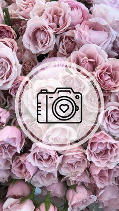 Instagram Background, Instagram Frame, Story Instagram, Instagram Logo, Instagram Story Template, Instagram Feed, Pastell Wallpaper, Rose Wallpaper, Wallpaper Backgrounds