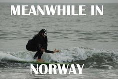 Meanwhile in Norway....... Black metal surfing
