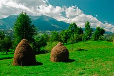 Romania, National Parks, Europe, Mountains, World, Nature, Travel, Google Search, Club
