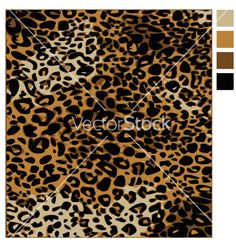 Leopard skin on VectorStock