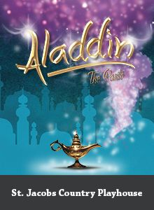 Aladdin The Panto Play Houses, Aladdin, Theatre, Entertaining, Seasons, Cool Stuff, Country, Movies, Movie Posters