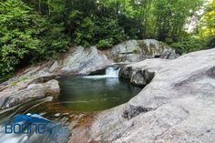 One of my favorite spots; lost cove :) Boone, NC