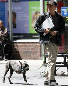 Jon Stewart has recently been spotted pounding the pavement with his three-legged dog, Champ. The Daily Show host is well-known for his love of dogs.