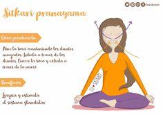 What Is Pranayama Yoga? Vinyasa Yoga, Yoga Ashtanga, Yoga Mantras, Yoga Meditation, Pranayama, Abc Yoga, Yogi Bhajan, Chico Yoga, Kundalini Yoga Poses