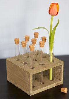 Breaking Bland Spice Rack. Whether you use this set of test tubes as a spice rack or a set of flower vases, your decor is sure to show a flair for the unique! #multi #modcloth