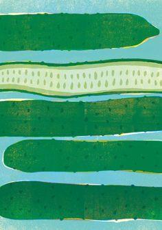 Cucumbers / Yamauchi Kazuaki Illustrations