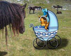 Biglietto cavallino Disegnato con Photoshop, su foto By Laura Giordanengo
