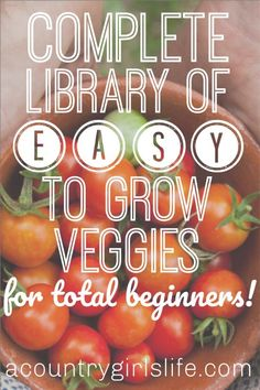 Easy To Grow Veggies & Fruits for Absolute Beginning Gardeners - A Country Girl's Life Ready to start your first vegetable garden? You cannot miss our list of the EASY to grow fruits and vegetables for absolute beginning gardeners! Easy Vegetables To Grow, Growing Veggies, Growing Plants, Fruits And Vegetables, Small Vegetable Gardens, Starting A Vegetable Garden, Vegetable Gardening, Vegetable Bed, Veggie Gardens