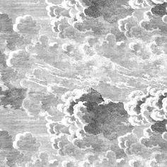 Cole & Son Wallpaper | Hicks Hexagon 95/3015