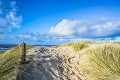 Texel Niederlande Dünen
