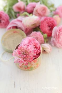 28 Ideas For Flowers Pink Photography Ana Rosa May Flowers, Amazing Flowers, Pink Flowers, Beautiful Flowers, Beautiful Pictures, Flower Power, Ranunculus Flowers, Pink Photography, Mason Jar Flowers