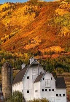White Barn..Amber Hills