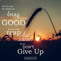 Galatians - Doing Good - Bible Verses To Go Encouraging Bible Verses, Bible Encouragement, Inspirational Verses, Bible Verse Art, Biblical Quotes, Bible Verses Quotes, Bible Scriptures, Powerful Scriptures, Wisdom Quotes