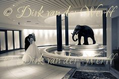 Seaham Hall Wedding Photography for Lucy and Paul | DIRK VAN DER WERFF - WEDDING PHOTOGRAPHY