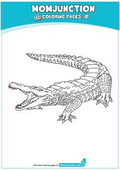 ausmalbilder indominus rex kostenlose für kinder in 2020 | ausmalbilder, ausmalen, dinosaurier