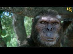 【人類誕生CG】440万年前の人類は愛妻家でイクメンだった!?【NHKスペシャル×NHK1.5ch】 - YouTube Primates, Mammals, Pet Dogs, Dog Cat, Prehistoric, Evolution, Finland, Face, Youtube