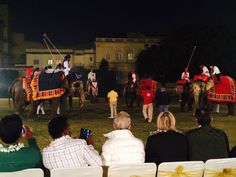 Guest witnessing elephant polo at city palace, Jaipur