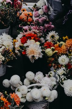 had to stop in Pentictons farmers market and snap a pic of these beautiful flowers!