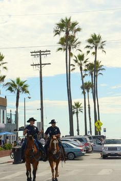 The Los Angeles Police Department mounted patrol in Venice Beach makes the area feel very safe for our Elite Adventure Tours guests.  I'm sure the horses enjoy the seaside community with all its unusual denizens as much as the visitors do.