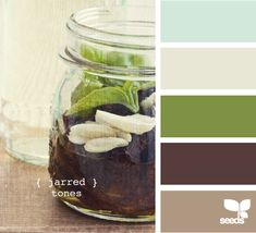 These might be the living room colors...maybe the green for the kitchen.