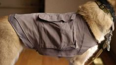13. Hack an old pair of cargo shorts into a dog-cooling vest.