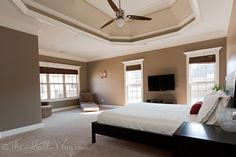 SW Tavern Taupe & tray ceiling is the 2 shades lighter than it – SW Stone Lion and SW Loggia