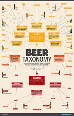 Beer taxonomy #infog