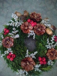 Bellis Perennis, Christmas Wreaths, Xmas, Best Perennials, Crafts For Kids, Diy Crafts, Pantone Color, Flower Crown, Botanical Gardens