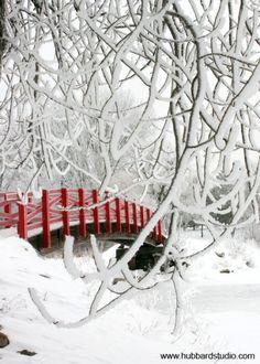 Winter Red Bridge,Park Rapids,MN