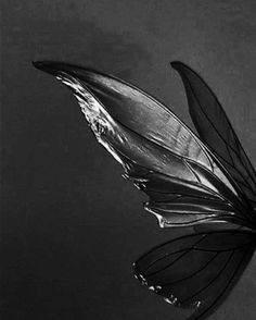 Angel Aesthetic, Aesthetic Collage, White Aesthetic, Aesthetic Vintage, Aesthetic Photo, Aesthetic Pictures, Black Fairy Wings, Black Wings, Black And White Pictures