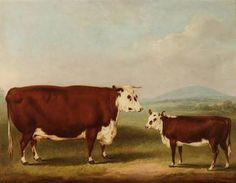 Image result for george stubbs cow paintings