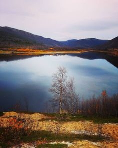 River Teno in Finnish Lapland. Photo by Marjariitta On the road Lappland, Filming Locations, Ponds, Waterfalls, Rivers, Arctic, Lakes, Finland, Places Ive Been