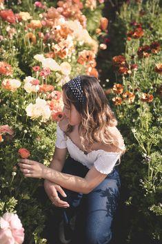 Carlsbad Flower Fields, Sweden, Passion, Flowers, Florals, Flower, Bloemen