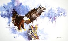 speed painting   bald eagle by abstractmusiq - Animal Illustrations by Jay Alam  <3 <3