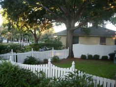 White picket fence >Definitely doing this for our front yard!