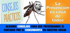 Es importante conocer los medios para prevenir el contagio del virus chikunguyna. dentro de los consejos esta el poder utilizar anjeos o mallas mosquiteras