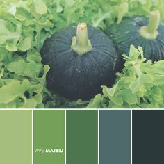 Dark green pumpkin with lettuce vegetable surrounding Color Palette #390 – Ave Mateiu - Fall Autumn 2020, color palette, color palettes, colour palettes, color scheme, color inspiration, color combination, art tutorial, collage, digital art, canvas painting, wall art, home painting, photography, weddings by color, inspiration, vintage, wallpaper, background, rustic, seasonal, season, natural, nature