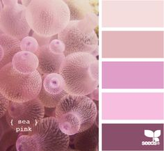 Sea Pink Color Palette-My daughters room ideas Scheme Color, Colour Pallette, Color Palate, Colour Schemes, Color Combos, World Of Color, Color Of Life, Decoration Inspiration, Color Inspiration