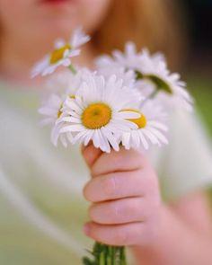 Blanc ... un bouquet pour Toi ..