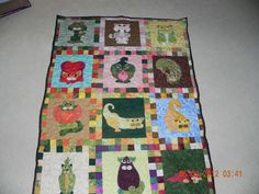 Veggie cat quilt Made for my mother n law.