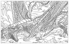 Harry Potter Magical Creatures Colouring Book 2: Amazon.co.uk: Warner Brothers: 9781783705825: Books