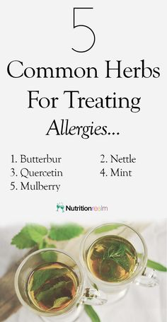 herbs to treat common allergies