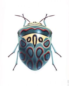 Picassso Shield Bug by Bernard Durin #Insects I could see bugs in all the art…