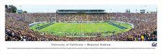 Cal Berkeley Golden Bears Panoramic Photo Print