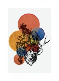 Deer Miranda by Eva Nashed