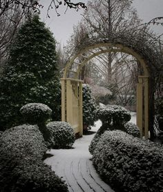 The Conservatory :: Wedding Venue, St. Charles, MO http://gardenwedding.com - Winter garden at The Conservatory